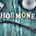hormones desirs sexualité