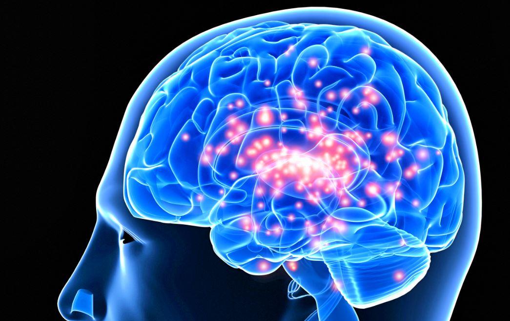 epilepsie senior