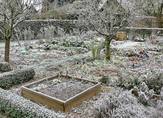 jardin froid