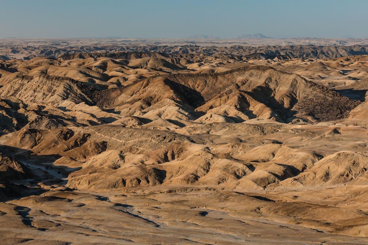 Le Désert Du Namib Et Ses Plantes Millénaires