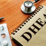 Dehydroepiandrosterone Dhea Hormone