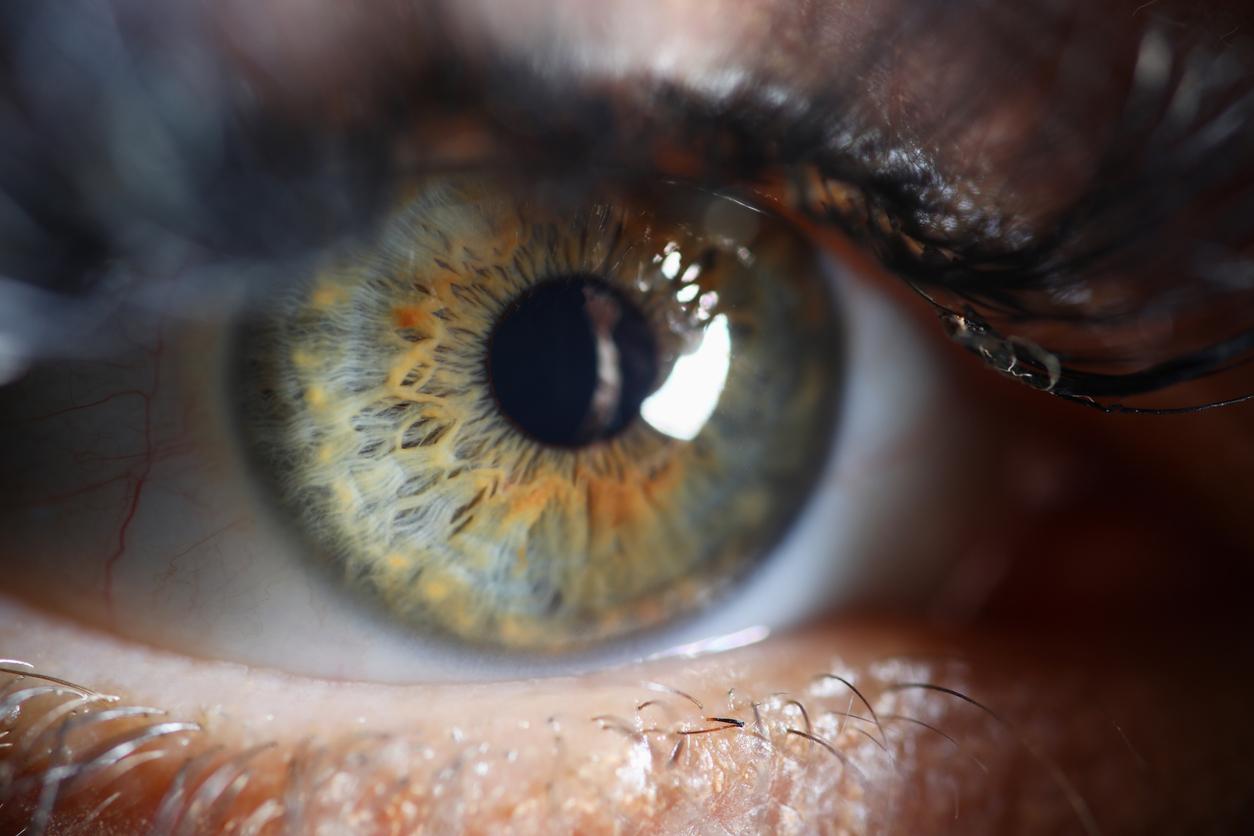 oeil humain zoom
